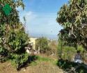 Vendita bilocale Carini Via Milazzo, 37, 45 metri quadri